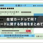 在留カードって何?在留カードに関する情報をまとめてご紹介!